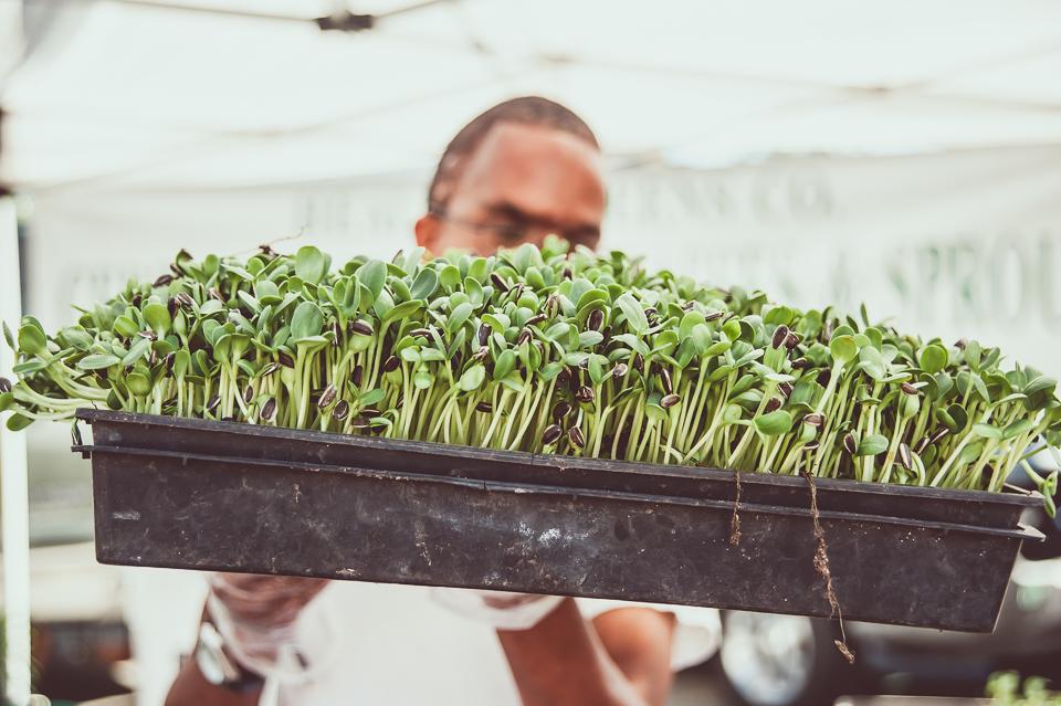farmers-market-14