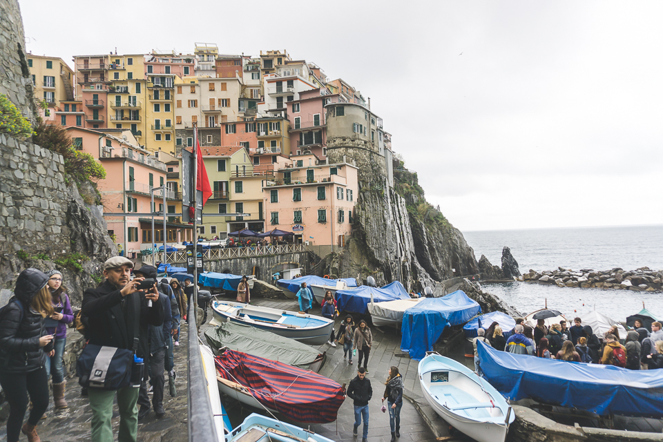 Manarola views