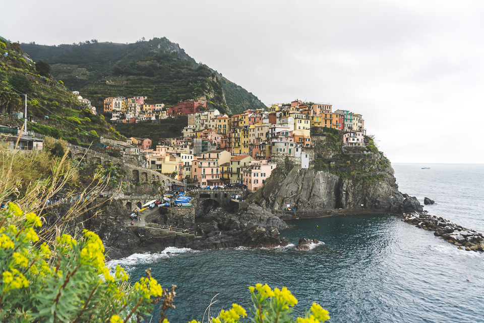 Manarola rain and spring flowers